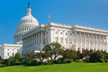 Take in many of the top highlights on a five day 